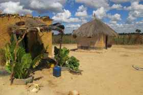 Farm in Zambia